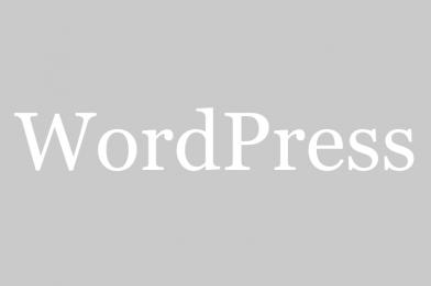 WordPress 4.0以上で投稿画面のエディターを広げない方法